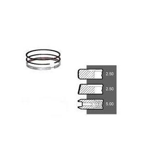3030-ZN116 Pierścienie 101,5mm 2,5x2,5x5mm