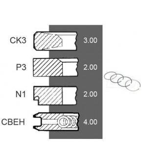 5030-ZN167 Pierścienie 100mm 3,00x2,00x2,00x4,00mm