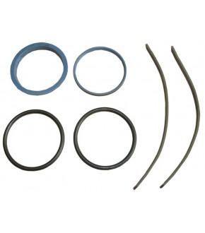 3011-SP50 Zestaw naprawczy wysprzęglika,3900427M91,